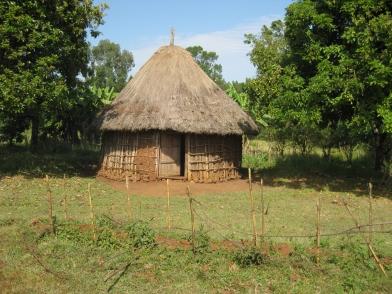 Een karakteristiek Ethiopisch hutje.